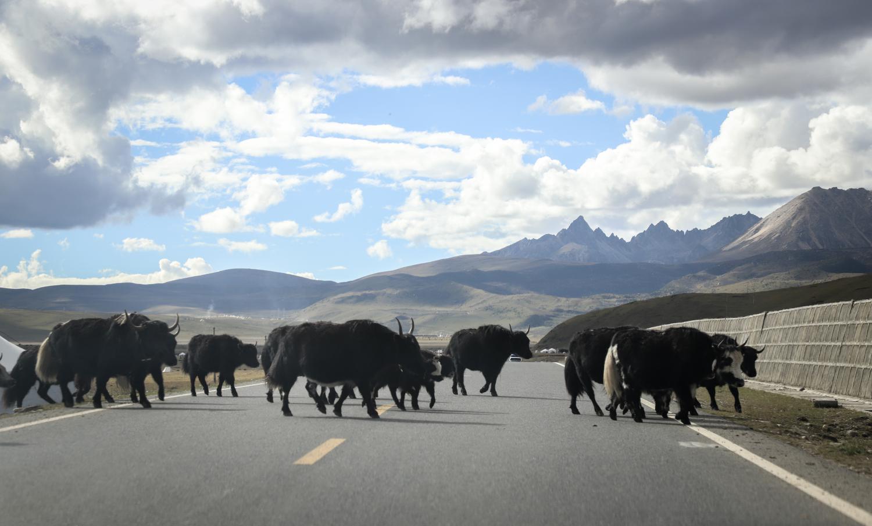 长沙西藏自驾游这样安排行程最合适