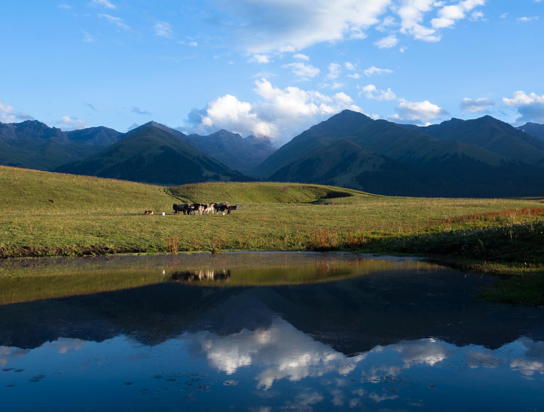 喀纳斯-禾木-天池-赛里木湖-那拉提-巴音布鲁克-吐鲁番-喀什-帕米尔高原-沙漠公路-独库公路18日落地自驾