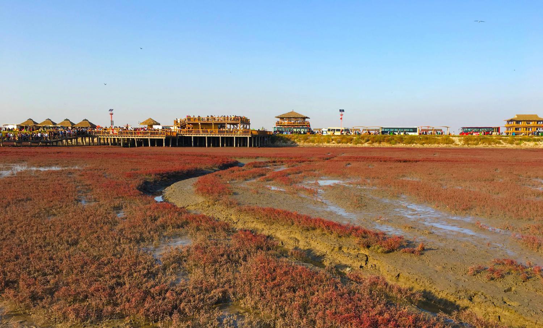 红海滩风景区,这些不能错过的景色