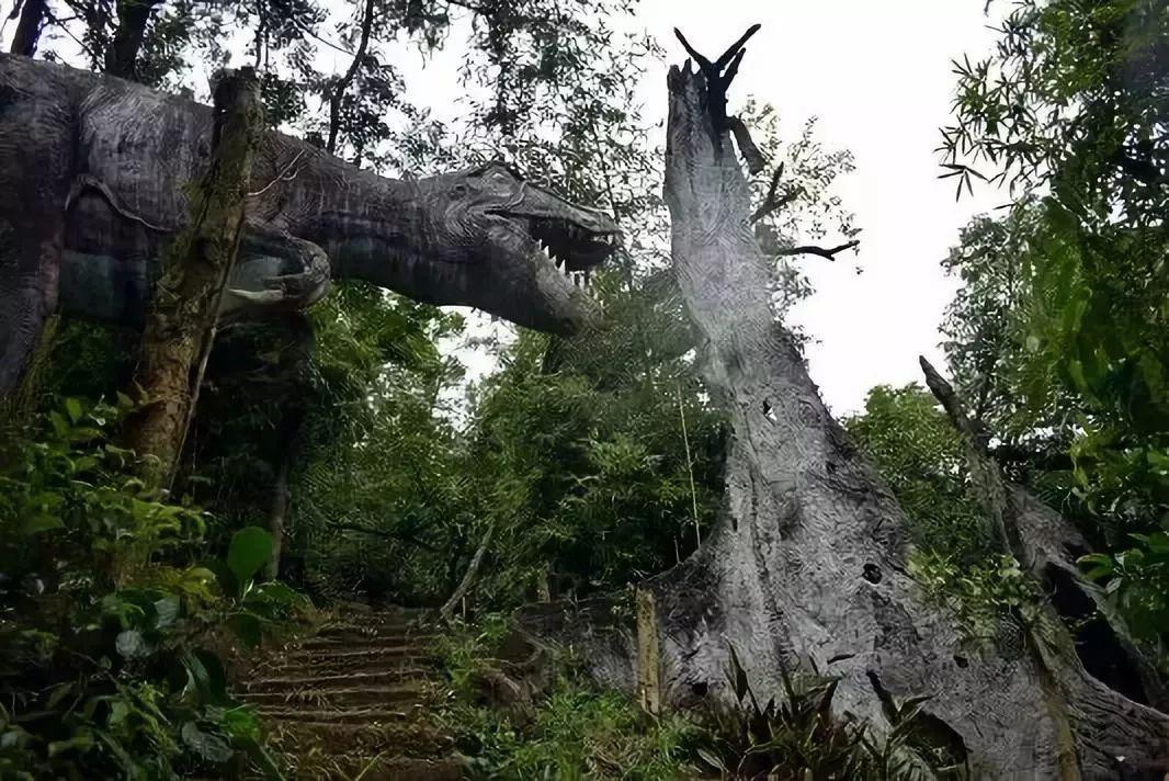 野山谷乐园,周末游玩小森林