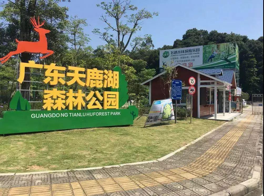 """""""广州东肺""""—天鹿湖森林公园游玩"""